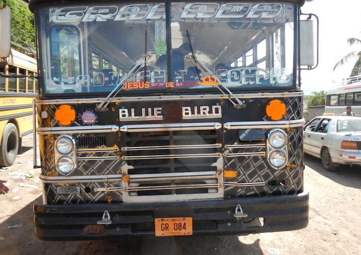 Blue Bird stadsbus