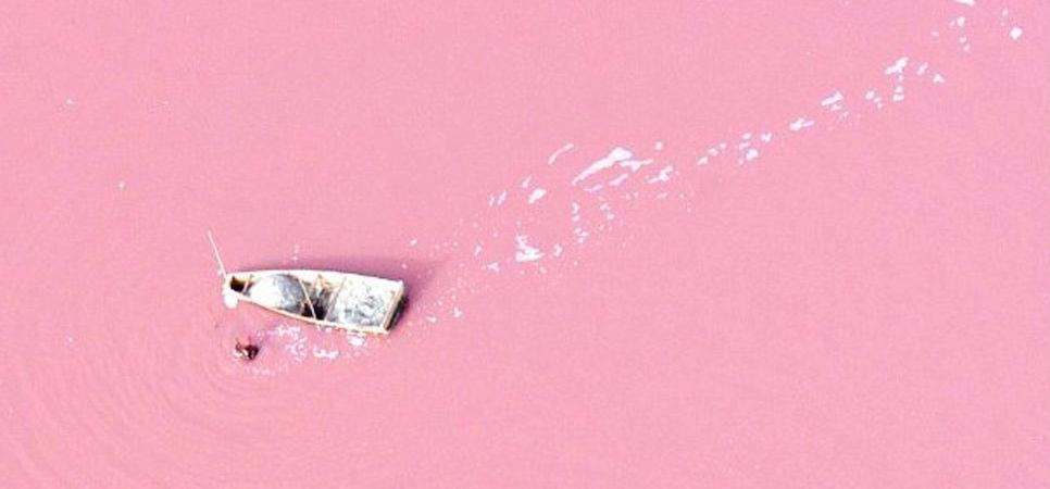 Roze meer