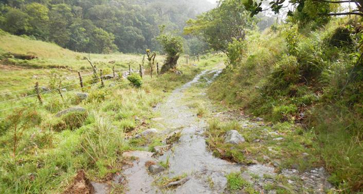 Wandelroutes in Boquete Panama