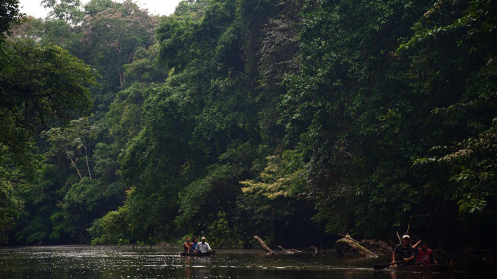 Nationaal Park Indio Maiz