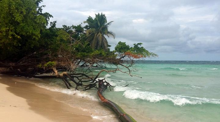 Stranden van Bocas del Toro