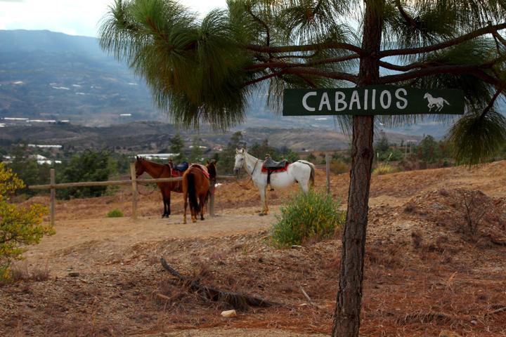 Villa de Leyva paardrijden