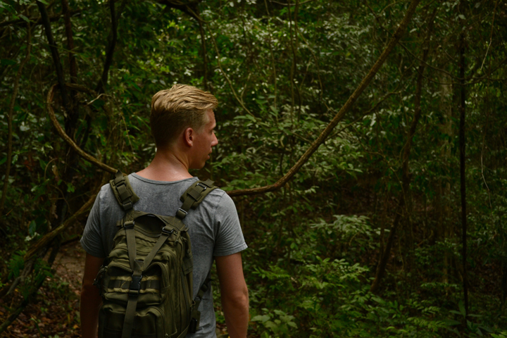 Jungle Koh Lanta National Park