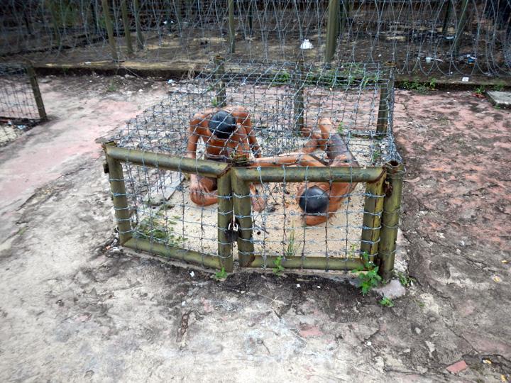 Martelingen Coconut tree prison Phu Quoc